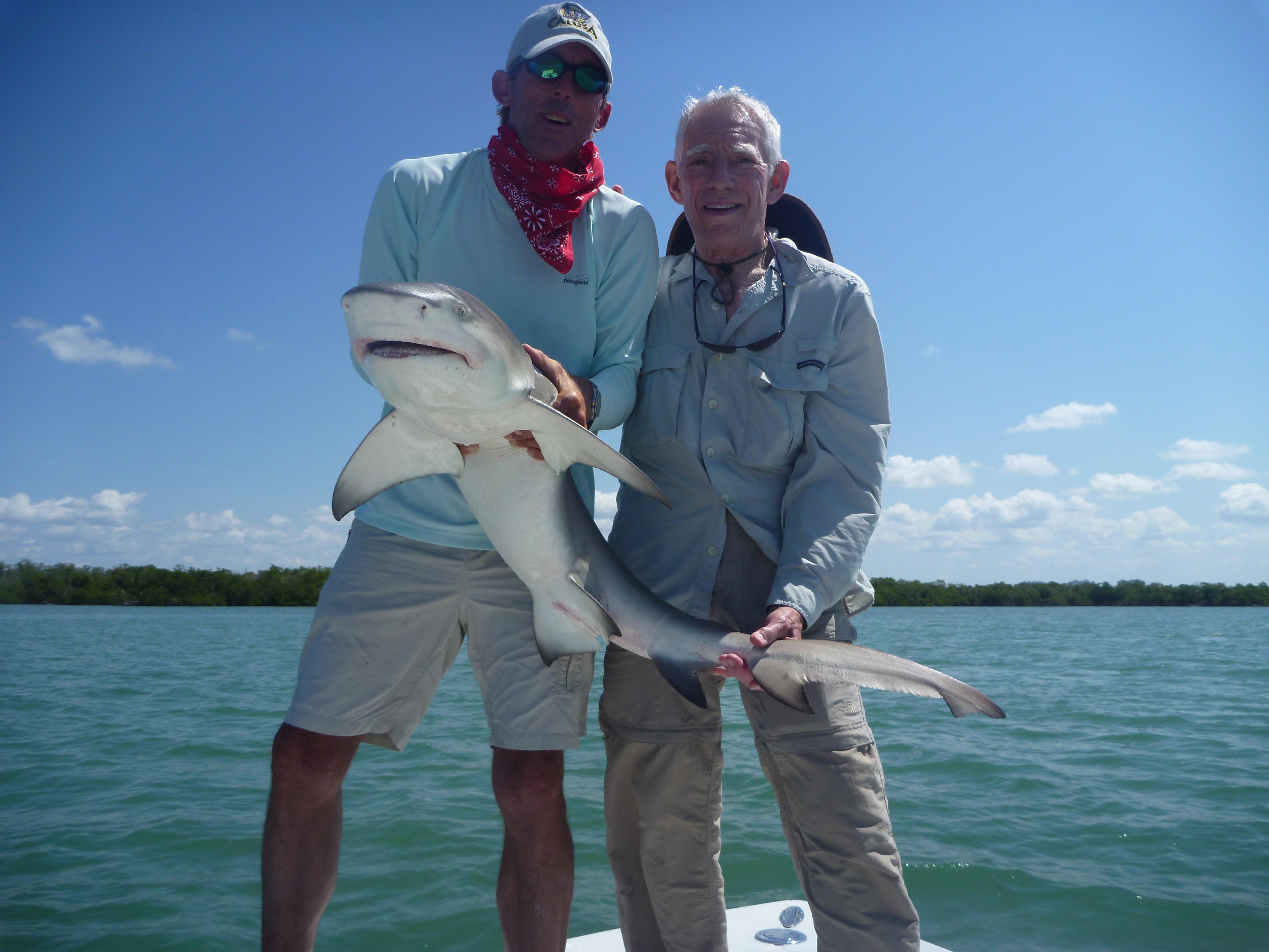 P1060331 naples fishing charters marco island fishing for Marco island fishing guides