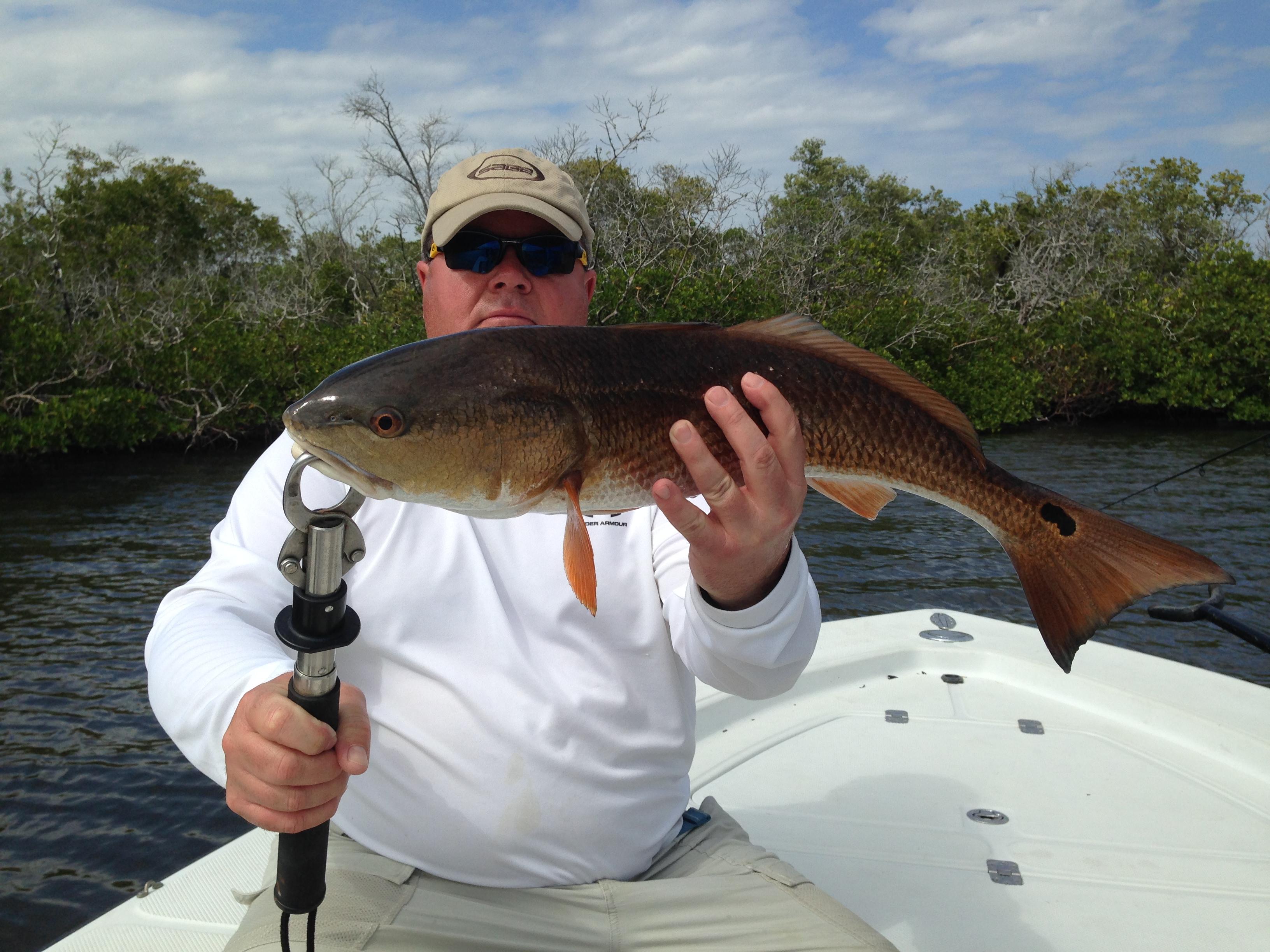 April 2014 naples fishing charters marco island fishing for Marco island fishing guides